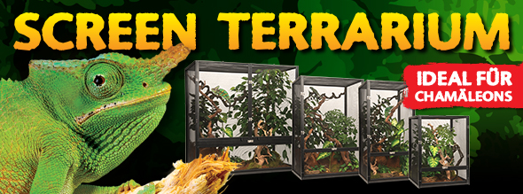 New: Screen Terrarium