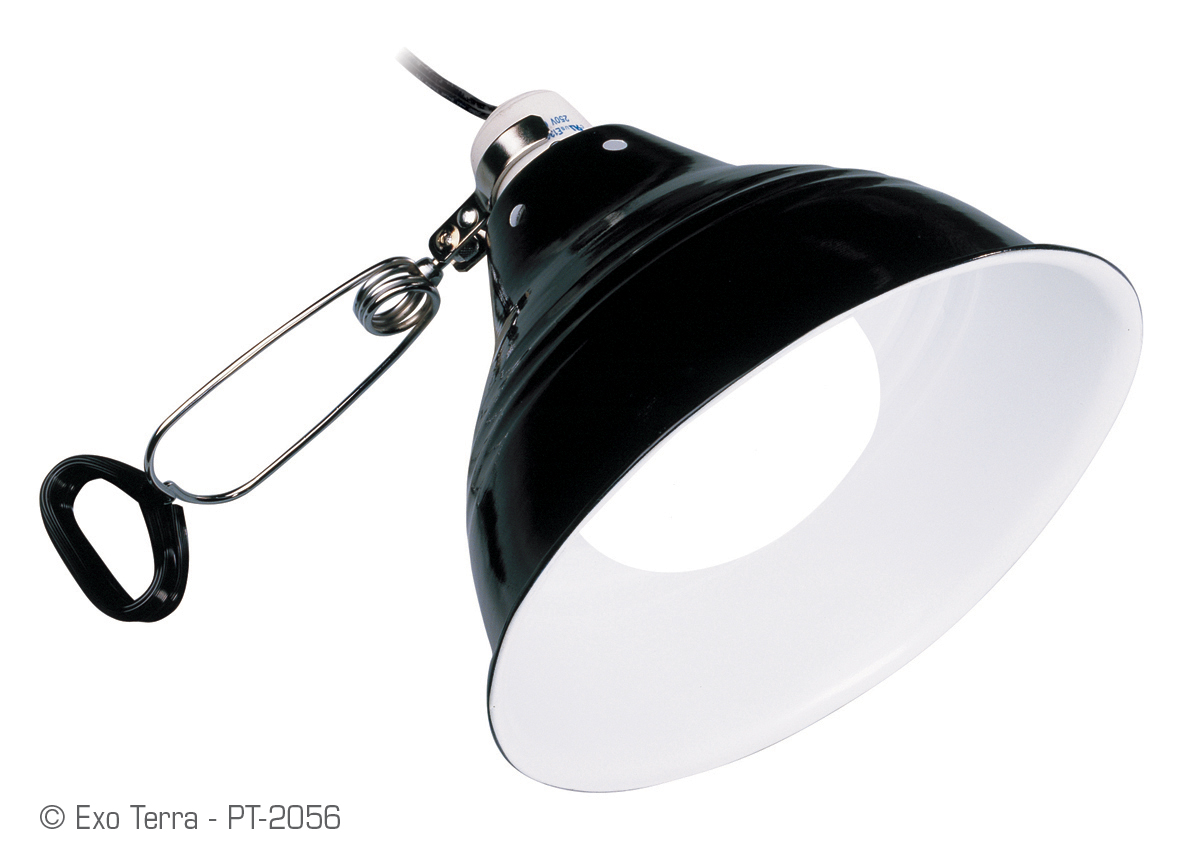 Exo terra glow light porcelain clamp lamp glow reflector high res img publicscrutiny Image collections