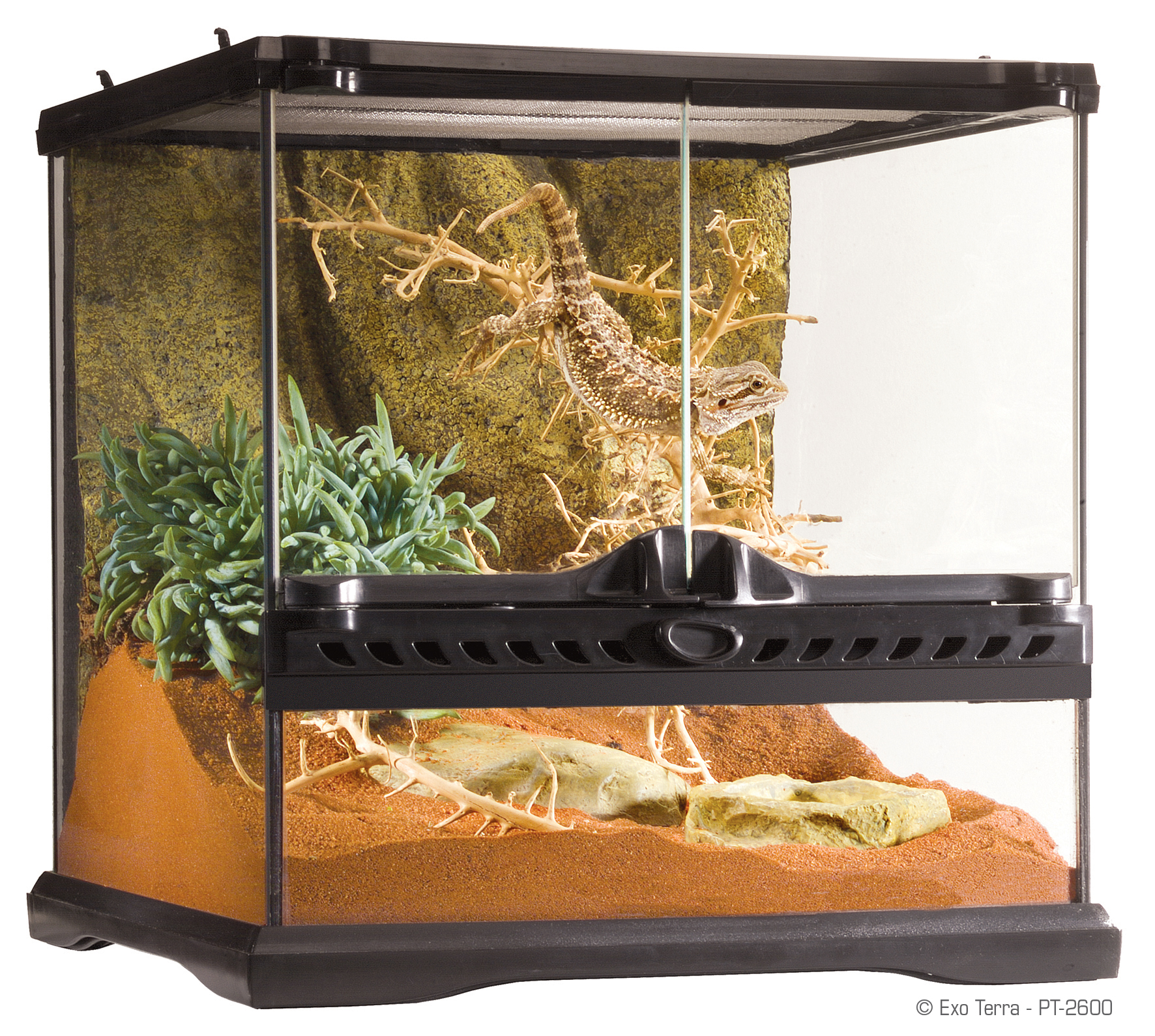 Exo Terra Natural Terrarium Mini Advanced Reptile Habitat