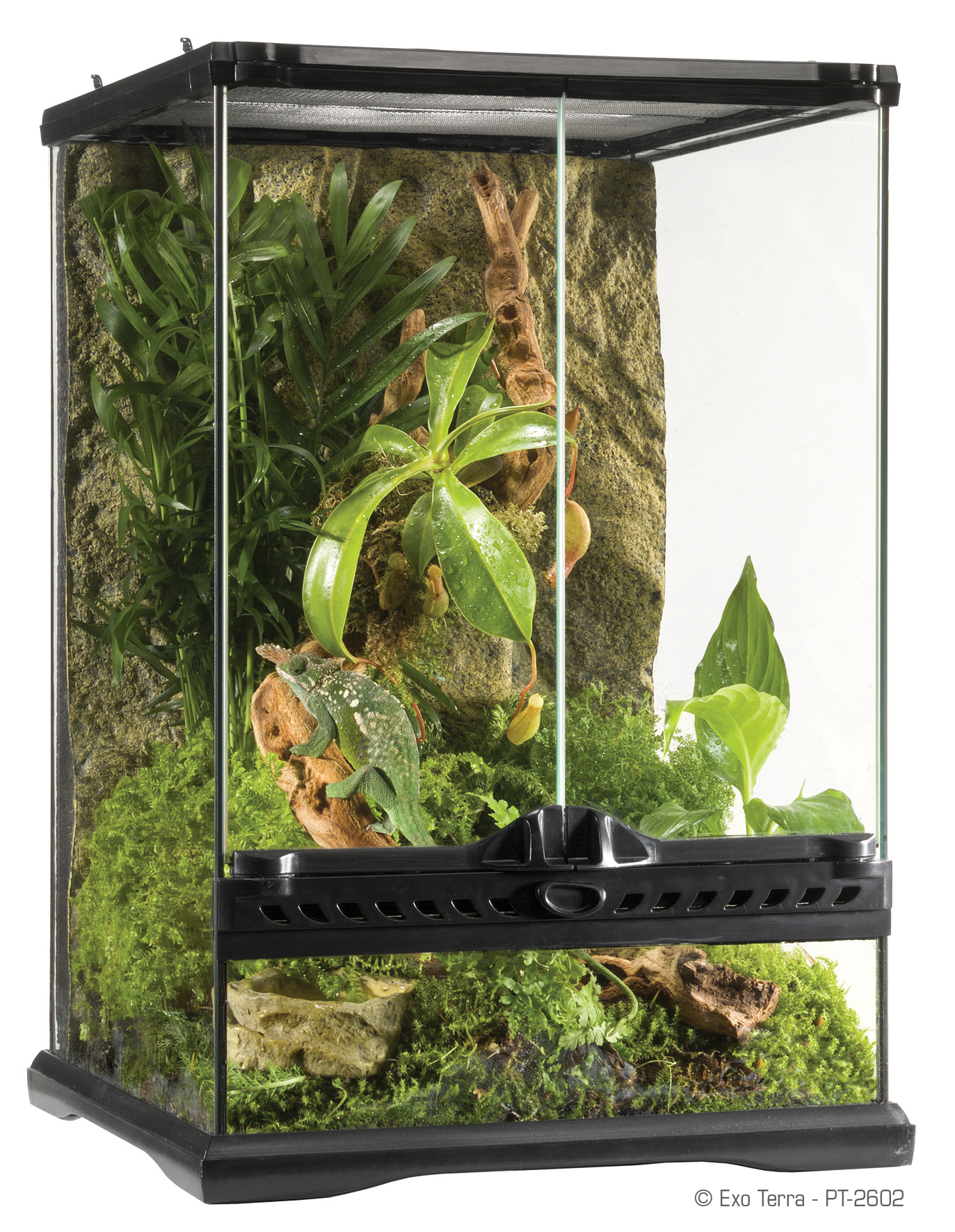 exo terra natural terrarium mini advanced reptile habitat. Black Bedroom Furniture Sets. Home Design Ideas
