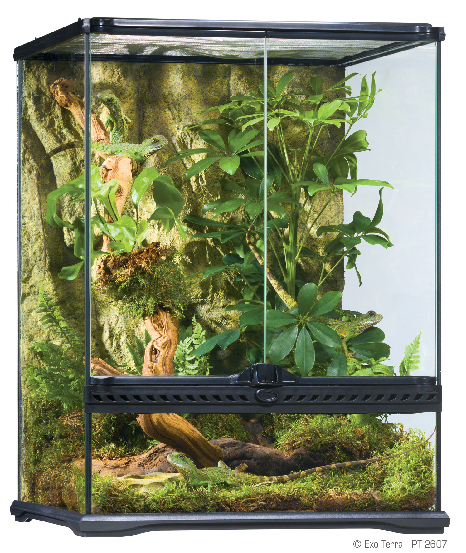 Exo terra natural terrarium small advanced reptile habitat for 18 x 60 window