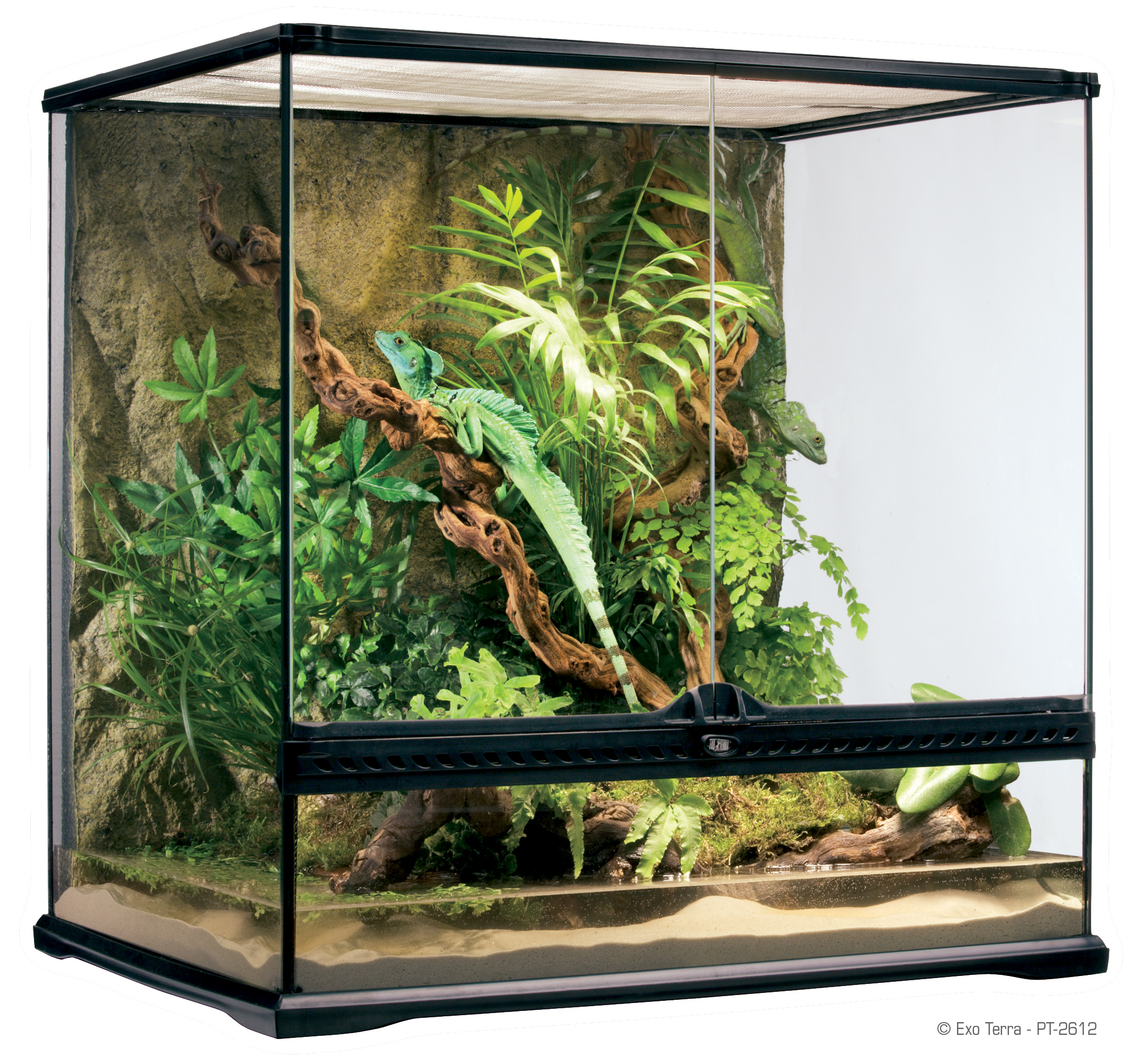 exo terra natural terrarium medium habitat d avant garde pour reptiles. Black Bedroom Furniture Sets. Home Design Ideas