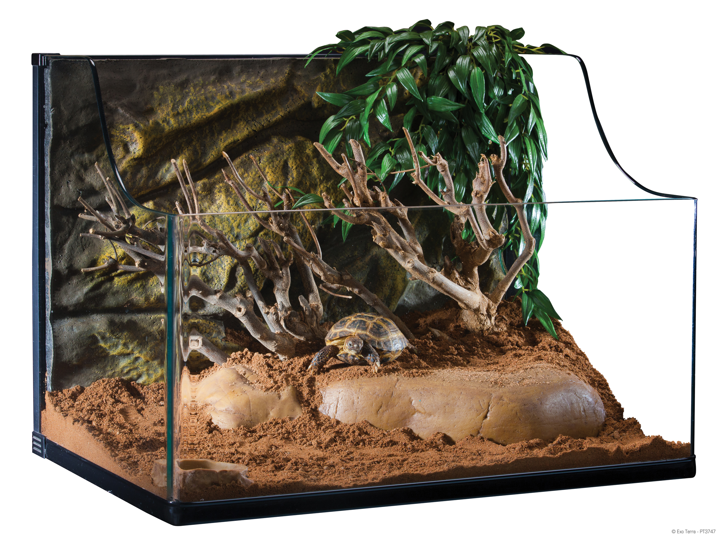 Exo Terra Turtle Terrarium Medium Aquatic Habitat