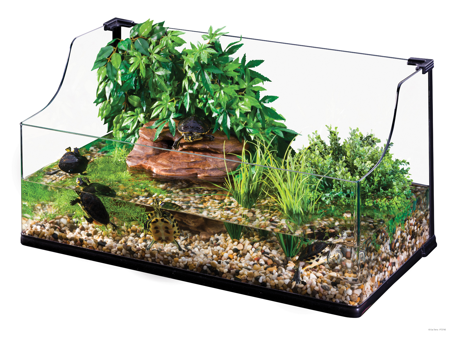 High Res Img ... - Exo Terra : Turtle Terrarium Large / Aquatic Habitat