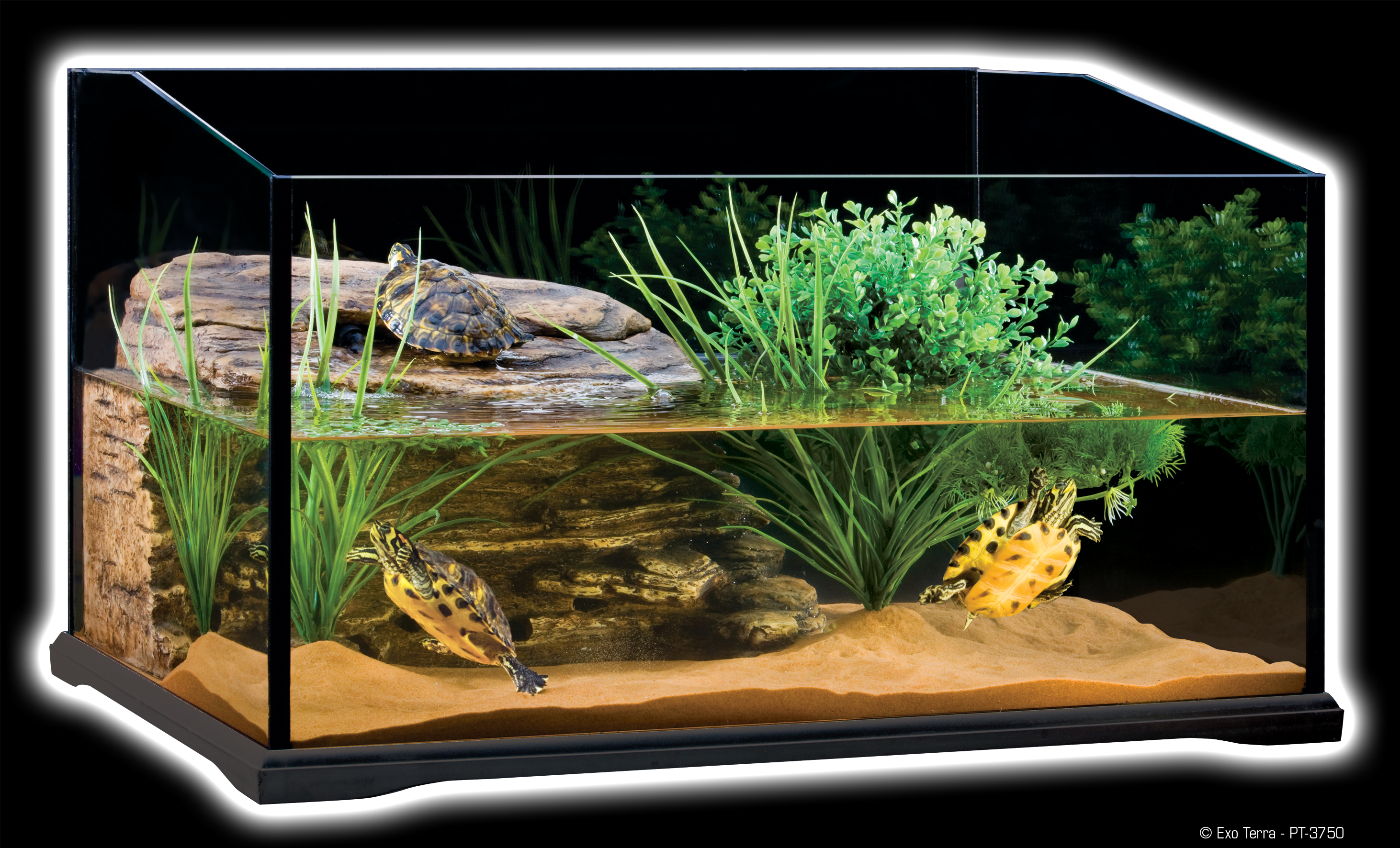 exo terra turtle terrarium aquatic reptile habitat. Black Bedroom Furniture Sets. Home Design Ideas