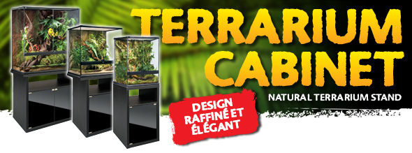 New: Terrariums cabinets