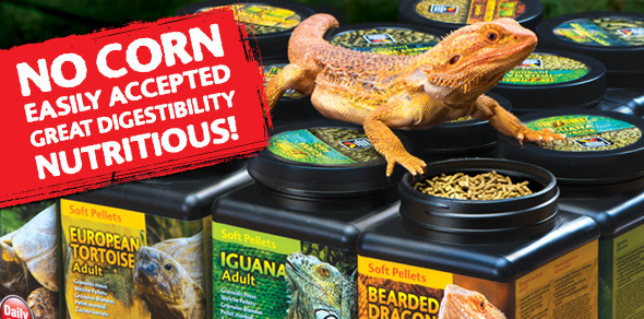 No Corn - Easily accepted - Great digestibility - Nutritious!