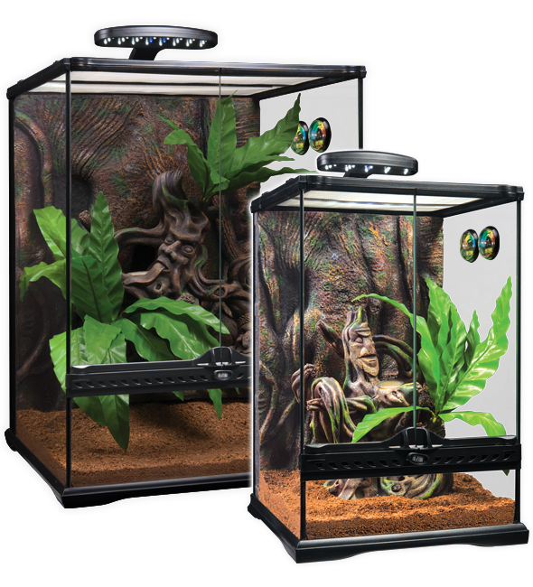 exo terra kit terrario cresta gecko tropican mascotas. Black Bedroom Furniture Sets. Home Design Ideas