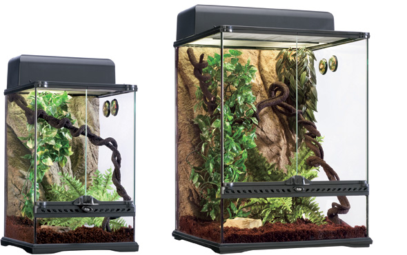 Exo terra rainforest habitat kit small 12x12x18 josh 39 s for Decoration habitat