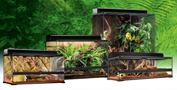 Natural Terrarium Large - Exo Terra : Natural Terrarium Large / Advanced Reptile Habitat